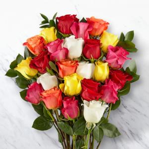 20-mixed-roses-amman-jordan-gift