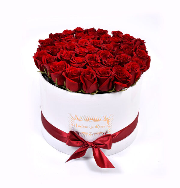 Red Roses in White Round Box