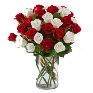 Red& White Roses