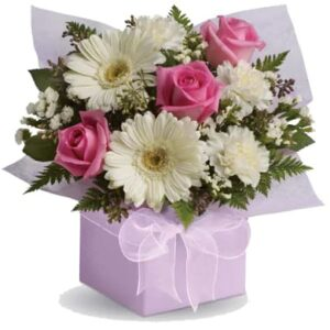 The Luxurious Gerbera and rose boxes