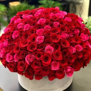 150 RED AND HOT PINK ROSES IN A BOX amman الاردن توصيل ورد