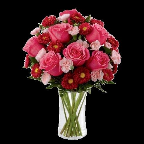 pink roses send to amman jordan