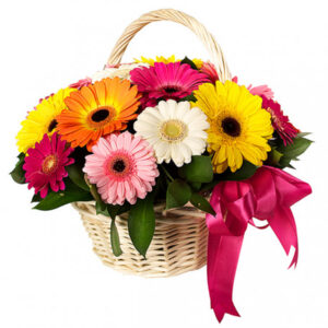 A Special Gerbera in A Basket - A special group of garbera flowers arranged and placed in a special basket